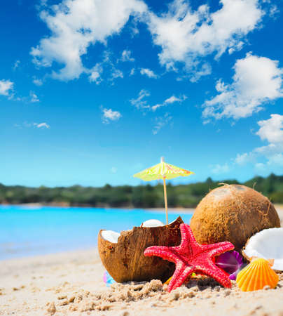 frutas tropicales: cocos y estrellas de mar de la costa en una playa tropical