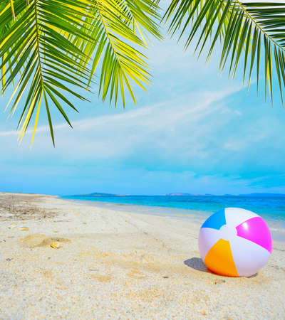 colorful ball under a palm tree by the shore