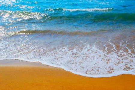 ferro: golden shore in Porto Ferro, Sardinia