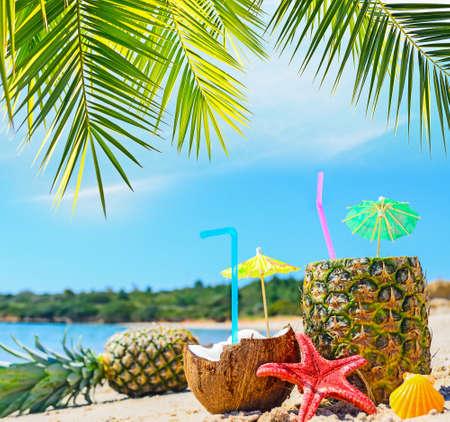 tropisch: frische tropische Früchte am Ufer unter einem Palmzweig Lizenzfreie Bilder