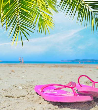sandal tree: pink flip flops under a palm branch Stock Photo