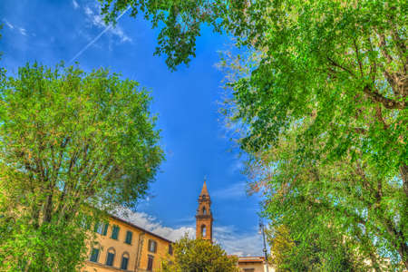 steeple: Santo Spirito steeple seen through green trees in Florence, Italy
