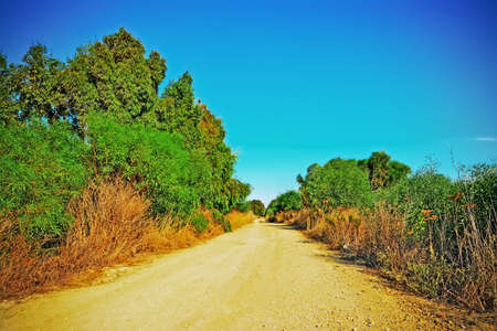 dirt: dirt road on a clear day Stock Photo