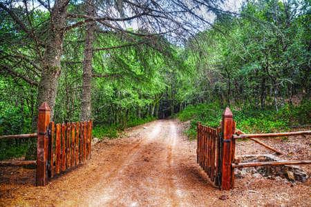 a rural community: brown gate in Burgos forest, Sardinia
