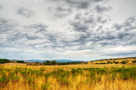 hay field: hay field under an overcast sky in Sardinia, Italy Stock Photo