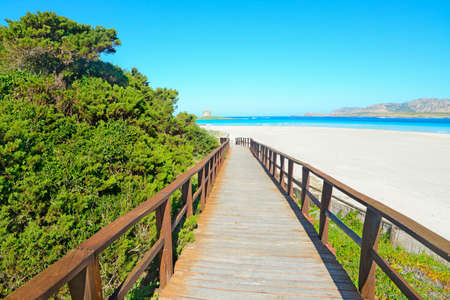 walk path: wooden walk path to the beach in Sardinia, Italy