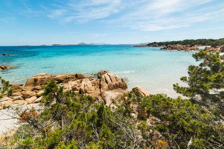 Mediterranean scrub in Capriccioli beach, Sardinia Stock Photo