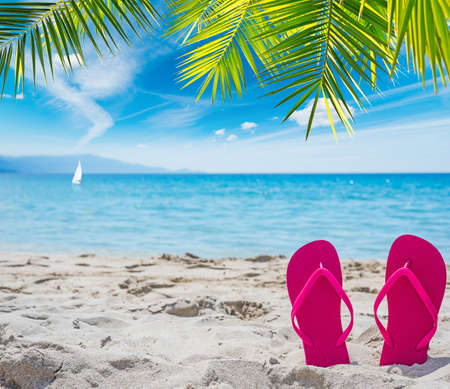 pink flip flops under a palm tree by the sea Stock Photo