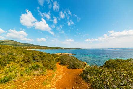 shoreline: colorful shoreline in Alghero, Sardinia