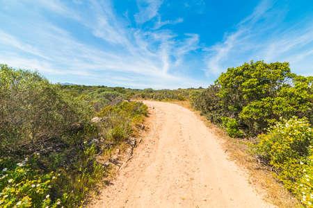 dirt path: dirt path in Sardinia, Italy Stock Photo