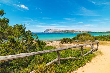 dirt path: dirt path to the beach in Costa Smeralda, Sardinia