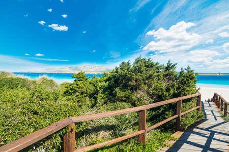 wooden walk path to the beach in Sardinia, Italy