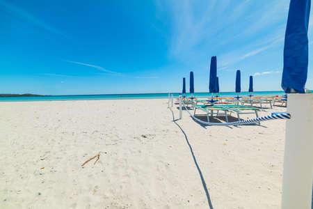 cinta: closed parasols in La Cinta beach, Sardinia