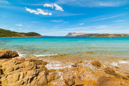 capo: golden shore in Capo Coda Cavallo, Sardinia