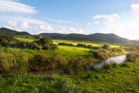 small creek in a green filed in Sardinia, Italy Stock Photo