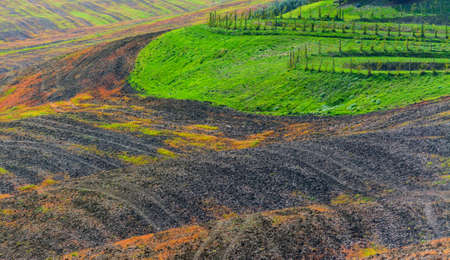 orcia: Detail of a Tuscan hill, Italy Stock Photo