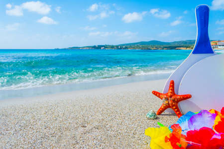Beack rackets and sea star on the sand in the summertime Stock Photo