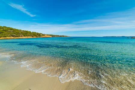 Blue sea in Andreani cove in Caprera island, Sardinia