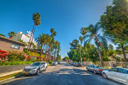 Los Angeles, CA, USA - November 02, 2016: Hawthorn avenue in Hollywood