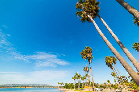 Palm trees by the sea in Mission Bay, San Diego. Southern California, USA