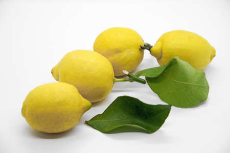 Lemons with leaves isolated on white background
