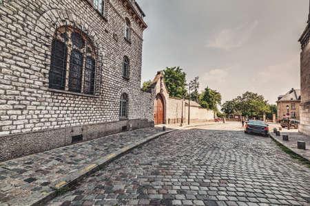 Paved street in Montmartre neighborhood. Paris, France 免版税图像
