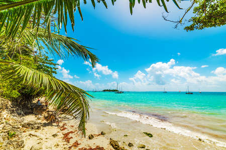 Colorful shore in La Datcha beach in Guadeloupe island. French west indies, Lesser Antilles