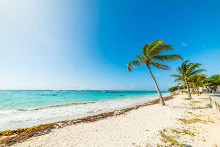 Raisins Clairs beach on a sunny day. Guadeloupe, Caribbean sea