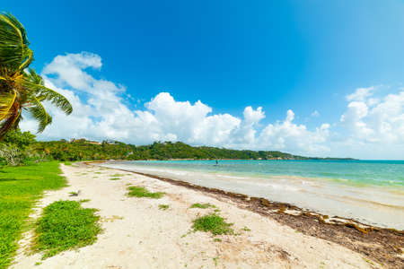 Colorful shore in Pointe de la Saline beach in Guadeloupe, French west indies. Lesser Antilles, Caribbean sea Stock Photo