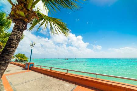 Côte Sainte Anne en Guadeloupe, Antilles françaises. Petites Antilles, mer des Caraïbes
