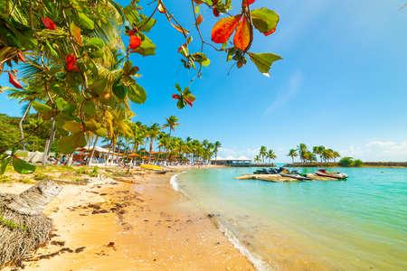 Mer turquoise sur la plage du Bas du Fort en Guadeloupe, Antilles françaises. Petites Antilles, mer des Caraïbes Banque d'images