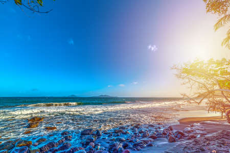 Sun shining over Grande Anse beach in Guadeloupe at sunset, French west indies. Lesser Antilles, Caribbean sea