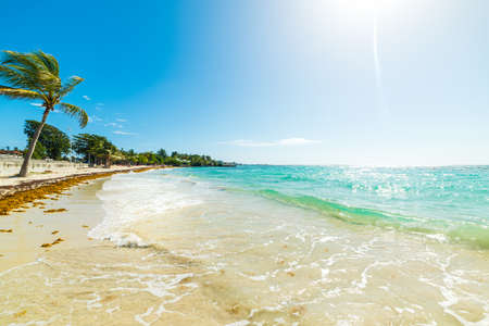 Sun shining over Raisins Clairs beach in Guadeloupe, French west indies. Lesser Antilles, Caribbean sea Stock Photo