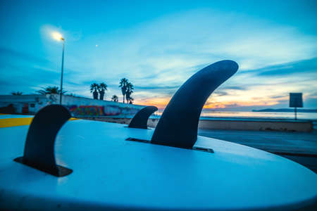 Surfboard on a car rooftop by the sea in the blue hour