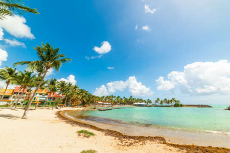 Bas du Fort beach on a sunny day. Guadeloupe, Caribbean sea Imagens
