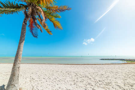 Smathers Beach on a sunny day. Key West, USA