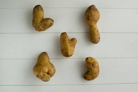 Ugly vegetables. Potatoes on a white wooden background. top viev The form does not affect the taste, ugly vegetables are tasty and sweetly just as normal.