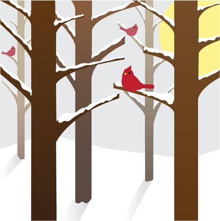 wintry: Cardinals on a wintry day Illustration
