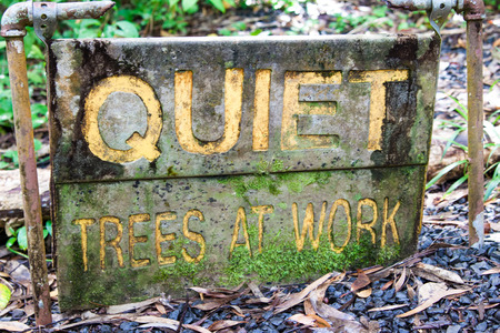 Wooden sign in the forest with message Quiet Trees At Work