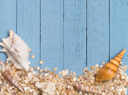 Seashells and crushed shells on a blue rustic wood background