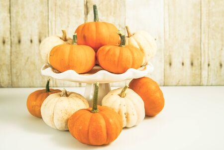 Orage and white mini pumpkins on wood plank background landscape orientation