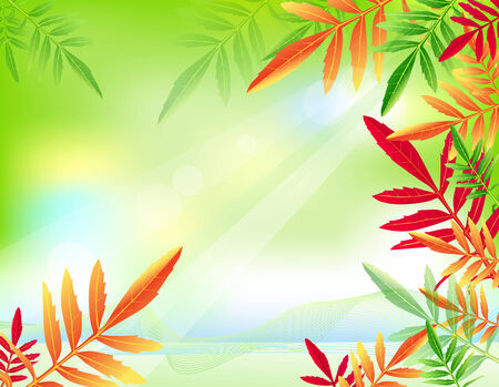 green background with autumn leaves Stock Vector - 8000416