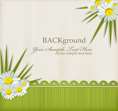 wedlock: Vector greeting card with daisies and abstracts background