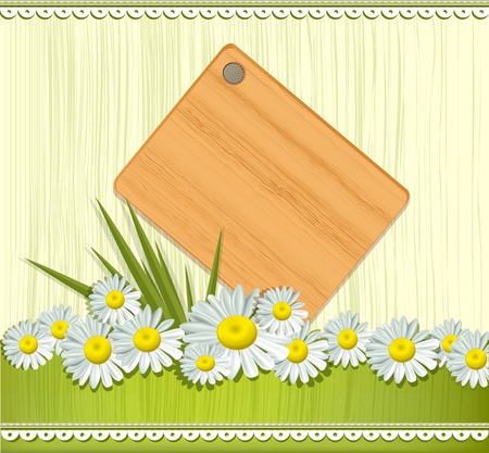 camomile flower: Vector greeting card with daisies and abstracts background
