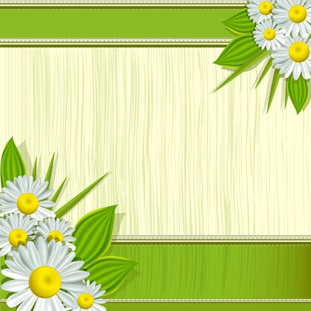 camomile: Vector greeting card with daisies and abstracts background