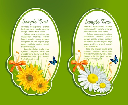 vector set, floral background with fresh herbs and butterfly Illustration