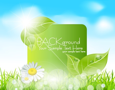 meadow: Vector spring banner with  leaves and grass against the blue sky