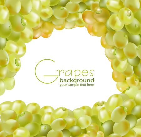 fresh grapes with drops of dew on a white background Vector
