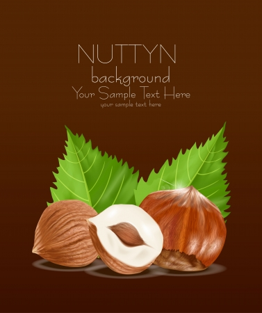 hazelnut kernels with the leaves on a brown background Vector