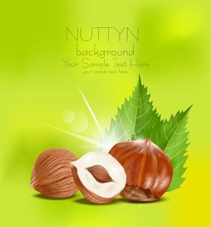nutty:  hazelnut kernels with the leaves on a green background